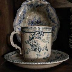 Favourite teacup