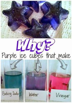 Use red cabbage to make your own pH indicator! Watch as acidic solutions turn pink, basic solutions turn blue, and neutral solutions turn purple! Fun science experiment to introduce kids to acid/base chemistry.