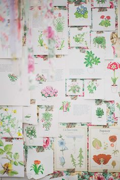 wall of botanical book pages, photo by Simply Rosie http://ruffledblog.com/surprise-greenhouse-proposal #backdrops