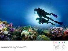 VIAJES EN PAREJA. El Caribe mexicano cuenta con diferentes lugares donde tú y tu pareja, pueden experimentar el buceo, como la península de Yucatán, cuya agua es tan cristalina que tiene una visibilidad de 200 pies. Sus atractivos principales son los arrecifes de coral y una gran variedad de fauna marina. En Booking Hello encontrarás las mejores opciones con todo incluido, para que puedan disfrutar de este maravilloso lugar. Visita nuestro sitio web para más información. #escapatealcaribe