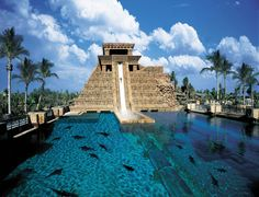 Atlantis Paradise Resort, Bahamas