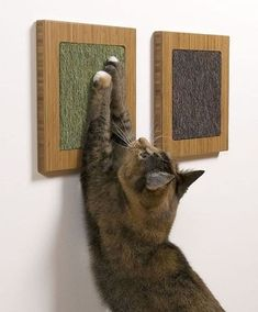 Yes, but larger! Nice scratch pads... http://www.kittydevil.com/product-category/cats-furniture/