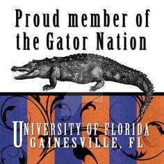 Gators Florida Gators College, Florida Gators Football, College Football Teams, University Of Florida, State Of Florida, Gator Football, Alma Mater, Alligators, Bait