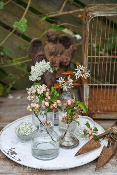 Apple blossoms. Styling and photography © Titti Malmberg/HWIT BLOGG