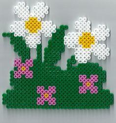 Marguerite hama beads by yaya