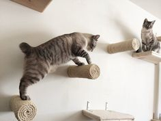 Floating sisal cat post van CatastrophiCreations op Etsy
