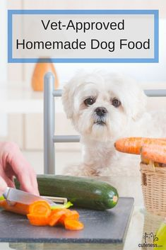 Save money and give your dog a healthy meal with these vet approved recipes for homemade dog food. #puppyideas
