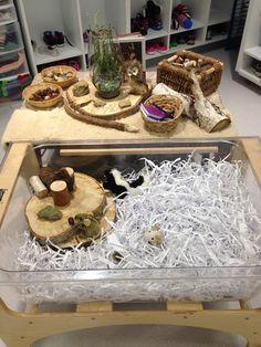 Sensory Table: Animals in Winter. Materials include reused cardboard an Sensory Table, Sensory Bins, Winter Activities, Preschool Activities, Infant Activities, Animals That Hibernate, Science Table, Bear Theme, Kindergarten Science