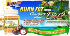 Does garcinia cambogia really work for weight loss, belly fat?