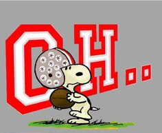 -I-O Buckeyes Football, Ohio State Football, Ohio State University, Ohio State Buckeyes, Ohio Stadium, My Ohio, Cincinnati, Peanuts Gang, Charlie Brown