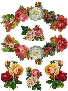 Vintage Botanicals, Wall Art, Art Print, Vintage Flowers, Vintage Home Decor Decoupage Vintage, Vintage Diy, Vintage Labels, Vintage Cards, Vintage Paper, Vintage Images, Vintage Flowers, Vintage Floral, Flower Prints