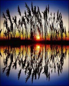 #sunset #reflection
