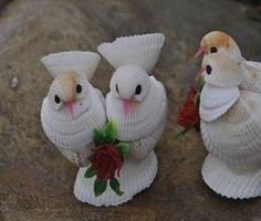 Shell Conch conchas conchas coral de pássaros de pequenos animais conch artesanato shell