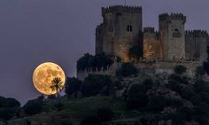 The moon rises behind the castle of Almodovar in Cordoba, southern Spain, on Sunday, Nov. The Supermoon on November will be the closest a full moon has been to Earth since January (AP Photo/Miguel Morenatti) Supermoon Photos, The Sky Tonight, Cool Pictures, Cool Photos, National Geographic Photography, Moon Rise, Super Moon, Stars And Moon, Full Moon