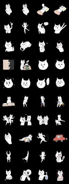 Amusing Cats