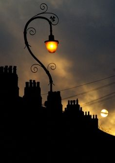 Dramatic yet delicate silhouette. The lamp almost looks like a flower blooming above the city.