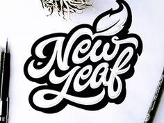 New Leaf | Fonts Inspirations | The Design Inspiration