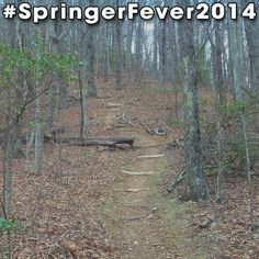 Springer Mountain - #AppalachianTrail #Trail #AT #BackpackingAT #Backpacking #Hiking