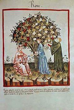 14. Jahrhundert, Hausbuch d. Cerruti / Rosen / 14.Jh.