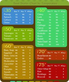 Seed starter chart