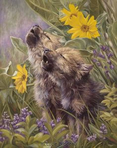 """Baby Wolves Howling"", oil on canvas, 14"" x 11"", by Lucie Bilodeau."