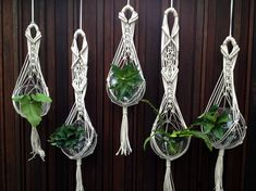 could totally make these mini macrame plant hangers with out of twine and little glass bowls and sell them on Facebook or at markets with succulent cuttings #GardenTwine