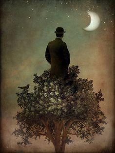 Catrin Arno - Man in tree