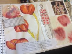 Sampling, developing and illustration. Sarah Davies.
