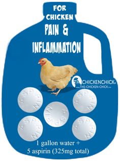 As long as there are no internal injuries, an aspirin drinking water solution can be offered to an injured chicken for a maximum of three days. Add 5 aspirin tablets (total of 325 mg) to one gallon of water.