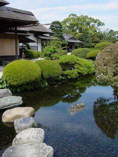#pond
