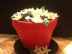 Cute little flower pot cake. Baked in a real terra cotta pot. Triple chocolate with chocolate buttercream.