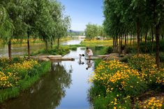 turenscape sanlihe river ecological corridor 02 « Landscape Architecture Works | Landezine Landscape Architecture Works | Landezine