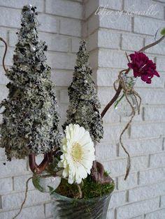liljer og konvaller: februar 2012