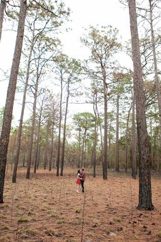 Gorgeous State Park Engagement Session in Florida