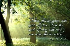 """Inspirational Quote: """"Follow effective action with quiet reflection. From the quiet reflection will come even more effective action."""" ~ Peter F. Drucker"""