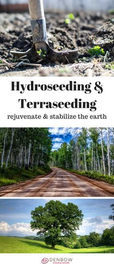 With our Terraseeding™ process with compost-based soils & growing mediums, Denbow creates lasting vegetation that rejuvenates & stabilizes the earth while looking beautiful. It's the ultimate ORGANIC Soil Amendment and Vegetation Establishment Process.  W