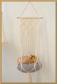 (paid link) cat hammocks #cathammock