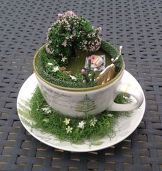 Tea-Cup-Fairy-Garden-Unusual-Gift