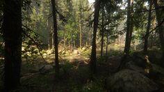 CryEngine forest lighting studies, Dmitriy S. on ArtStation at https://www.artstation.com/artwork/B95R8