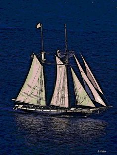 "Schooner ""Californian"""
