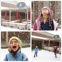 Homeschool Travel Snowing Jackson Hole