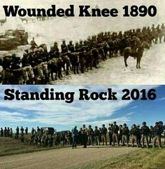 We must fight them with all we have! #NoDAPL #NotMyPresident