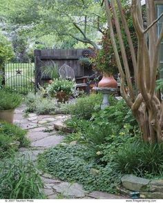 Right Plants, Right Places | Fine Gardening
