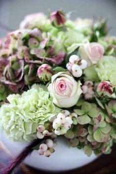 delicati fiori