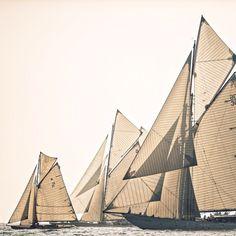 The American Pastoral Catamaran, Ship Dog, Cruise Italy, American Pastoral, Charter Boat, Boat Rental, Boat Hire, Sail Away, Set Sail