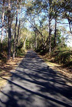 Eastern Shore of Virginia Refuge new bike trail near Cape Charles. WONDERFUL WALK