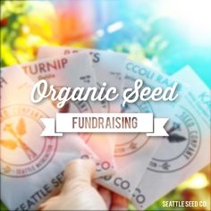 Organic, non-GMO Vegetable, Herb and Flower Seeds for your garden. School Fundraisers, Organic Seeds, Flower Seeds, Non Profit, How To Raise Money, Fundraising, Budgeting, Finance, Organization