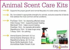 Animal Scent Care Kits Essential Oils Dogs, Doterra Essential Oils, Essential Oil Blends, Young Living Oils, Young Living Essential Oils, Young Living Distributor, Creative Names, Oils For Dogs, Yl Oils