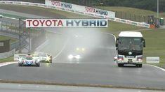 Toyota Hybrid, Safari, Circuit