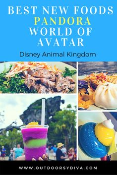 Pandora World of Avatar Best new foods from the new land opening at Disney World Animal Kingdom park this summer.
